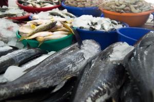 Market_Fish